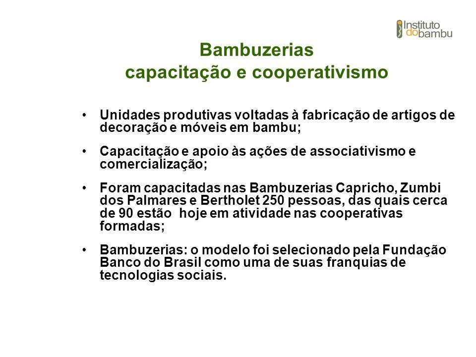 Bambuzerias capacitação e cooperativismo Unidades produtivas voltadas à fabricação de artigos de decoração e móveis em bambu; Capacitação e apoio às a