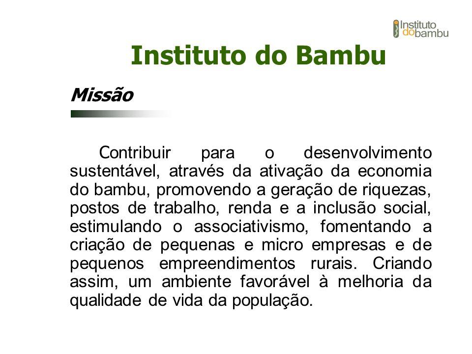 Instituto do Bambu Missão C ontribuir para o desenvolvimento sustentável, através da ativação da economia do bambu, promovendo a geração de riquezas,