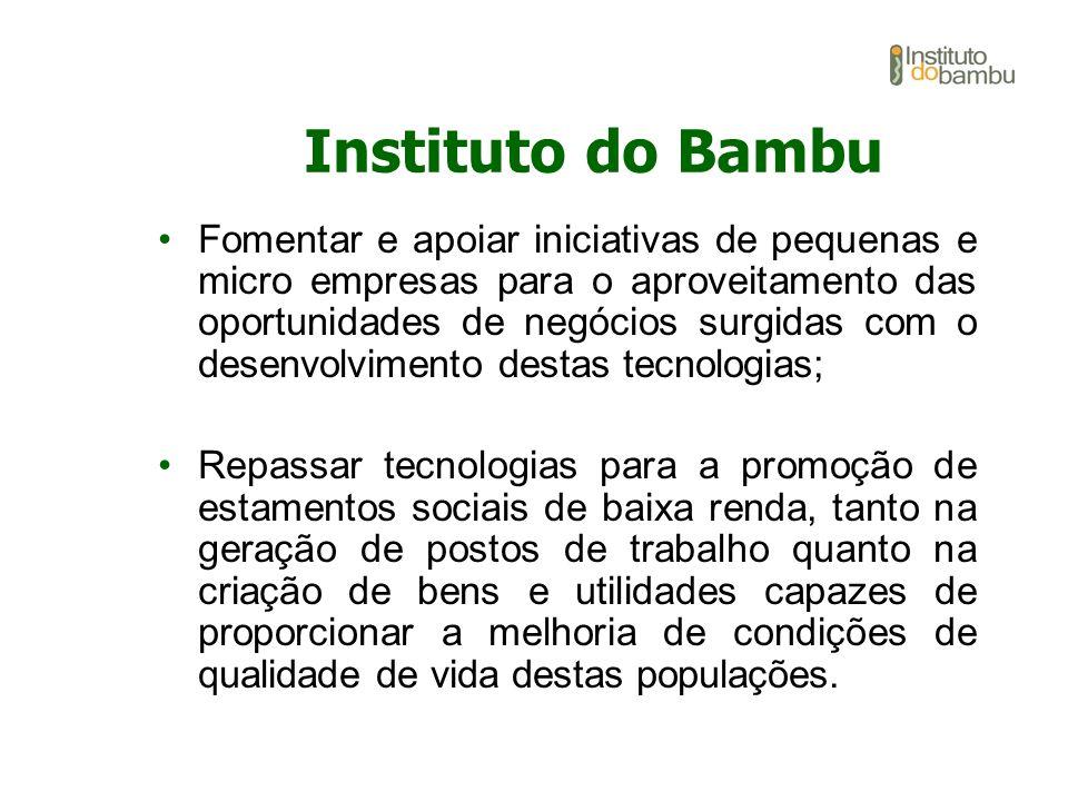 Fomentar e apoiar iniciativas de pequenas e micro empresas para o aproveitamento das oportunidades de negócios surgidas com o desenvolvimento destas t