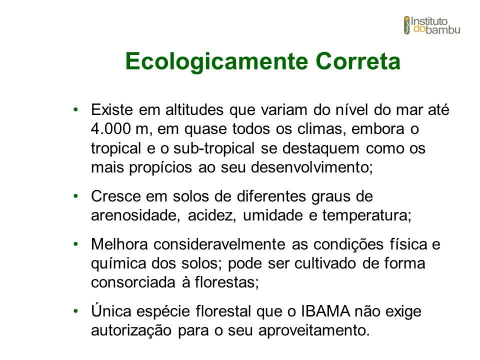 Ecologicamente Correta Existe em altitudes que variam do nível do mar até 4.000 m, em quase todos os climas, embora o tropical e o sub-tropical se des