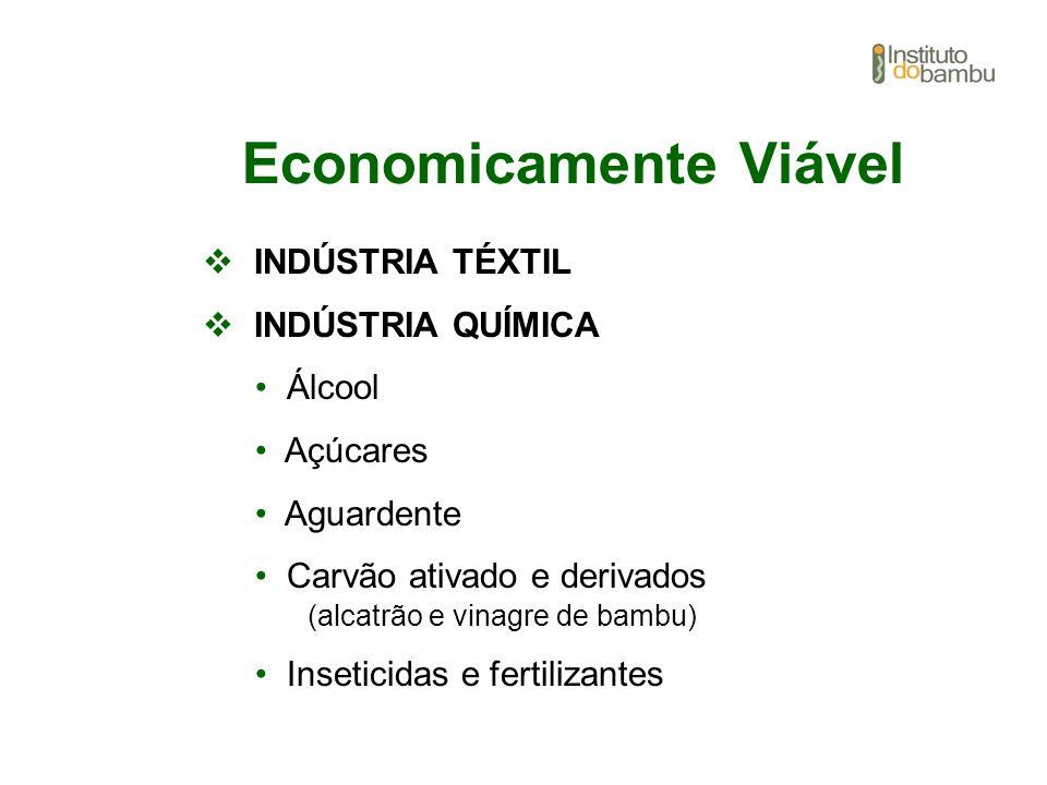 Economicamente Viável INDÚSTRIA TÉXTIL INDÚSTRIA QUÍMICA Álcool Açúcares Aguardente Carvão ativado e derivados (alcatrão e vinagre de bambu) Inseticid