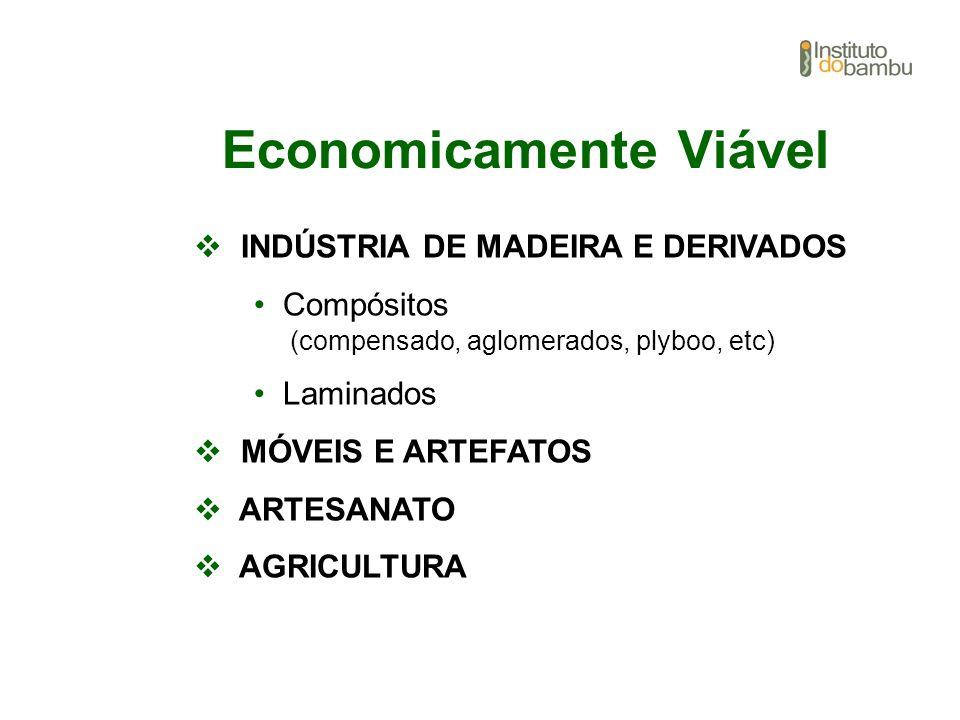 Economicamente Viável INDÚSTRIA DE MADEIRA E DERIVADOS Compósitos (compensado, aglomerados, plyboo, etc) Laminados MÓVEIS E ARTEFATOS ARTESANATO AGRIC