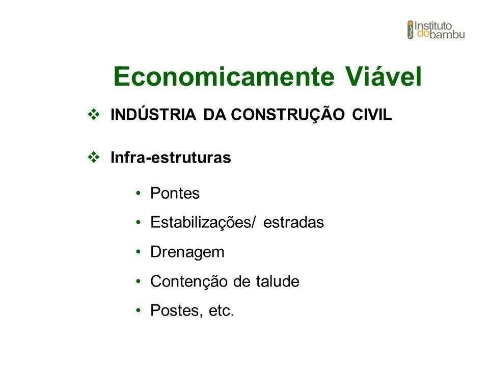 Economicamente Viável INDÚSTRIA DA CONSTRUÇÃO CIVIL Infra-estruturas Pontes Estabilizações/ estradas Drenagem Contenção de talude Postes, etc.