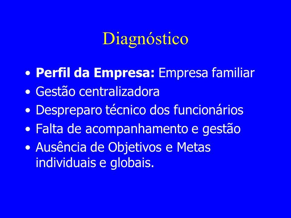 Diagnóstico Perfil da Empresa: Empresa familiar Gestão centralizadora Despreparo técnico dos funcionários Falta de acompanhamento e gestão Ausência de