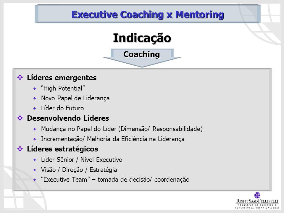 Indicação Líderes emergentes High Potential Novo Papel de Liderança Líder do Futuro Desenvolvendo Líderes Mudança no Papel do Líder (Dimensão/ Respons