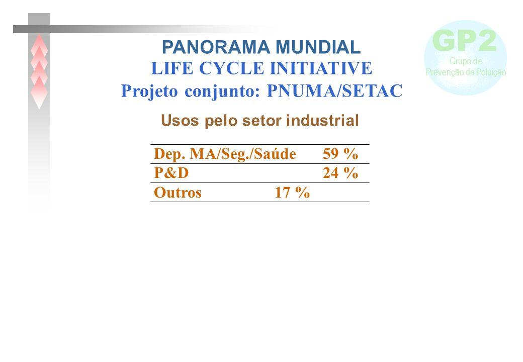 GP2 Grupo de Prevenção da Poluição Dep. MA/Seg./Saúde 59 % P&D 24 % Outros 17 % Usos pelo setor industrial LIFE CYCLE INITIATIVE Projeto conjunto: PNU