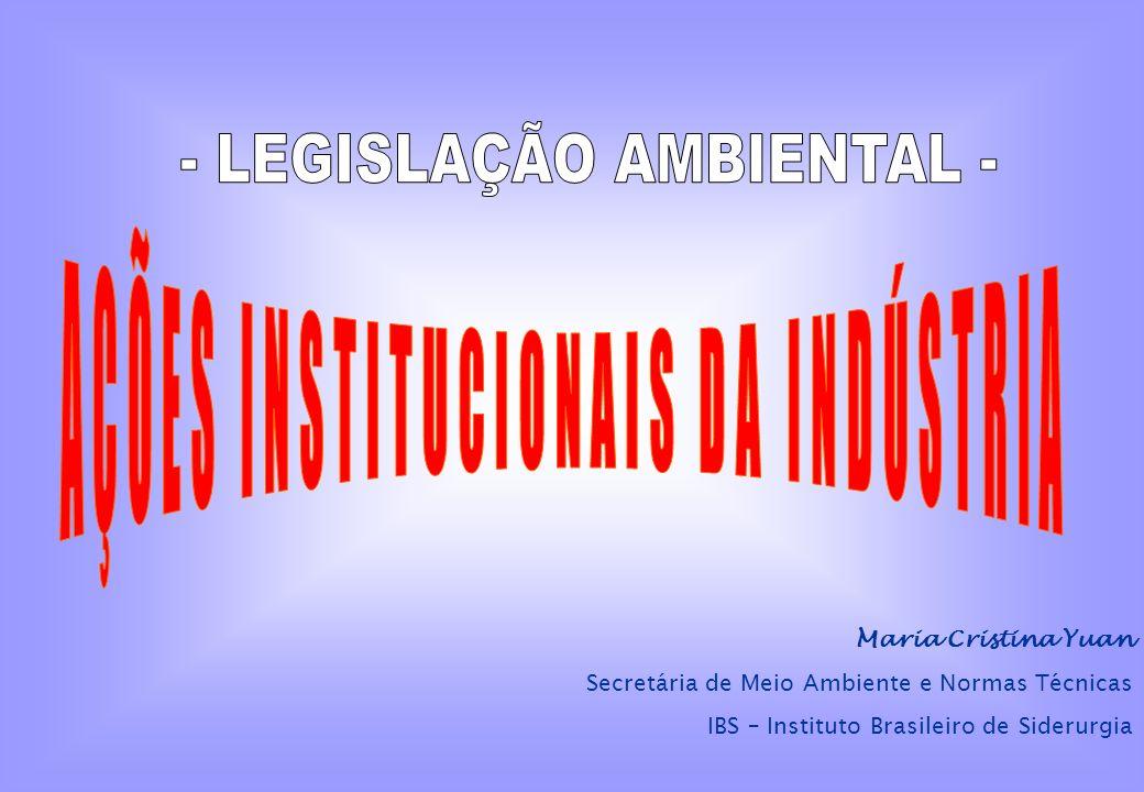 A ATUAÇÃO INSTITUCIONAL DA INDÚSTRIA NA ÁREA AMBIENTAL REPRESENTAR E DEFENDER OS INTERESSES DO SETOR EM FOROS GOVERNAMENTAIS E NÃO GOVERNAMENTAIS, COM ÊNFASE NA REGULAMENTAÇÃO AMBIENTAL FOCADA NA INDÚSTRIA.