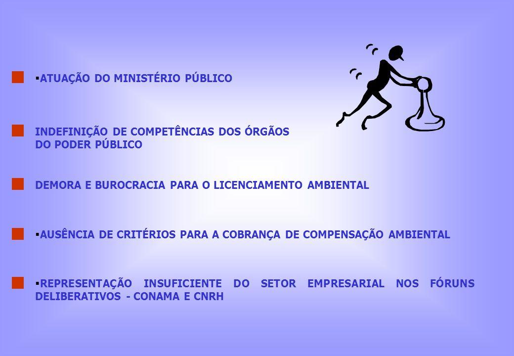 ATUAÇÃO DO MINISTÉRIO PÚBLICO DEMORA E BUROCRACIA PARA O LICENCIAMENTO AMBIENTAL INDEFINIÇÃO DE COMPETÊNCIAS DOS ÓRGÃOS DO PODER PÚBLICO AUSÊNCIA DE C