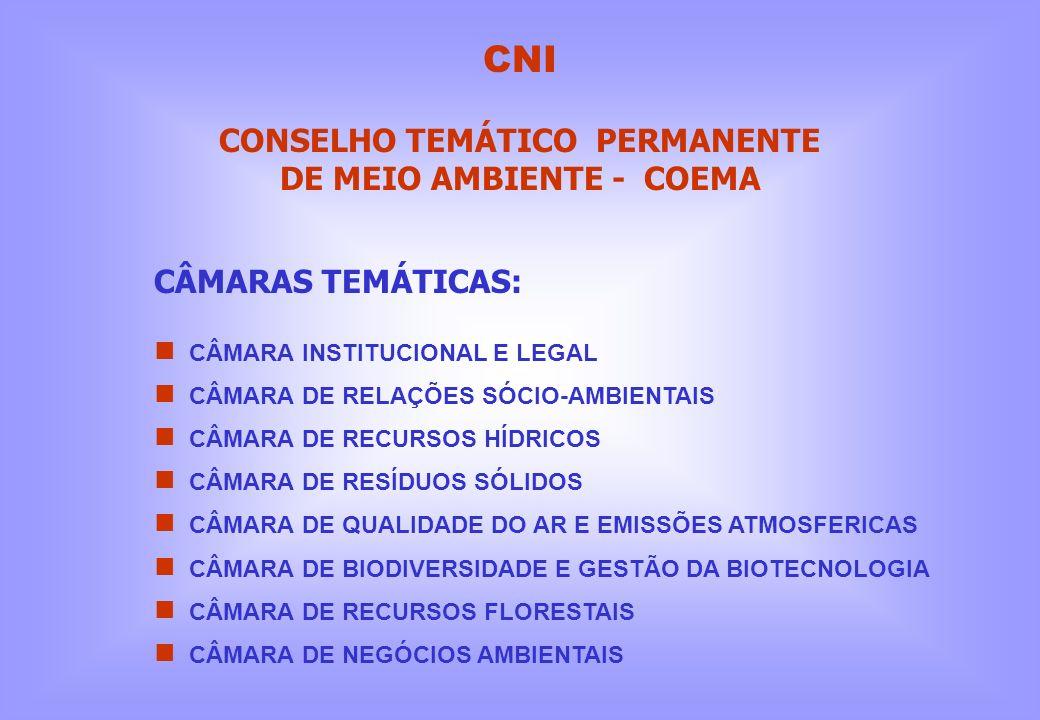 CÂMARAS TEMÁTICAS: CÂMARA INSTITUCIONAL E LEGAL CÂMARA DE RELAÇÕES SÓCIO-AMBIENTAIS CÂMARA DE RECURSOS HÍDRICOS CÂMARA DE RESÍDUOS SÓLIDOS CÂMARA DE Q