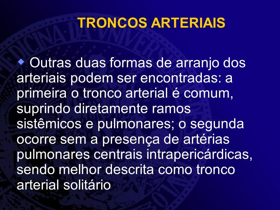 TRONCOS ARTERIAIS Outras duas formas de arranjo dos arteriais podem ser encontradas: a primeira o tronco arterial é comum, suprindo diretamente ramos