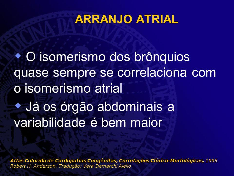 ARRANJO ATRIAL O isomerismo dos brônquios quase sempre se correlaciona com o isomerismo atrial Já os órgão abdominais a variabilidade é bem maior Atla