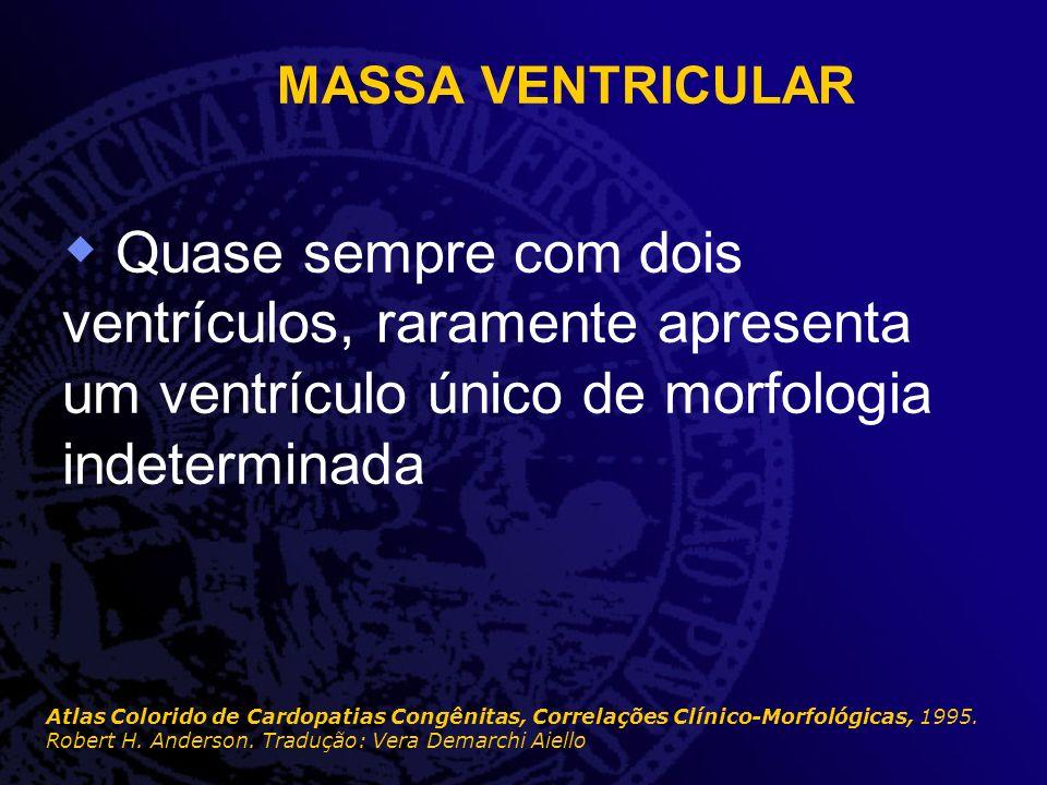 MASSA VENTRICULAR Quase sempre com dois ventrículos, raramente apresenta um ventrículo único de morfologia indeterminada Atlas Colorido de Cardopatias