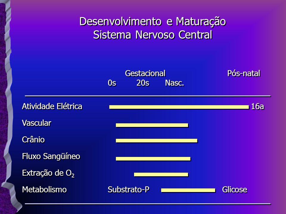 Gestacional Pós-natal 0s20sNasc. Atividade Elétrica16a Vascular Crânio Fluxo Sangüíneo Extração de O 2 MetabolismoSubstrato-PGlicose Gestacional Pós-n