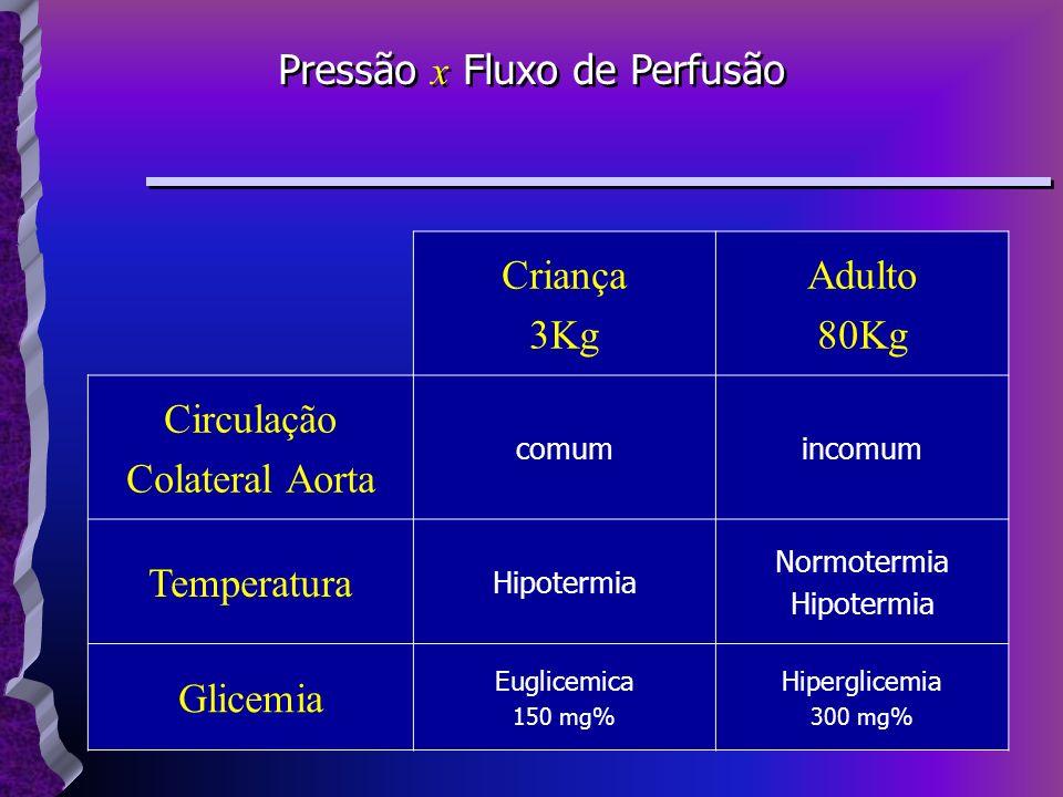 Criança 3Kg Adulto 80Kg Circulação Colateral Aorta comumincomum Temperatura Hipotermia Normotermia Hipotermia Glicemia Euglicemica 150 mg% Hiperglicem
