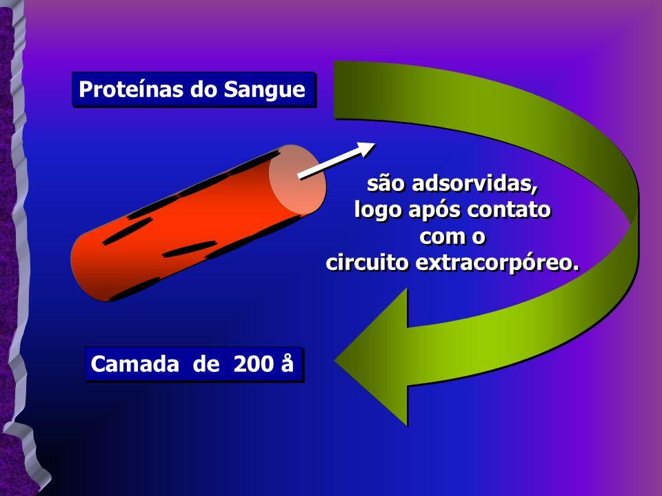 Proteínas do Sangue Camada de 200 å são adsorvidas, logo após contato com o circuito extracorpóreo. são adsorvidas, logo após contato com o circuito e