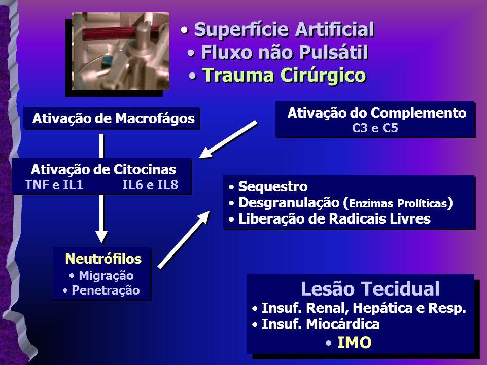 Superfície Artificial Fluxo não Pulsátil Trauma Cirúrgico Superfície Artificial Fluxo não Pulsátil Trauma Cirúrgico Ativação de Macrofágos Ativação do