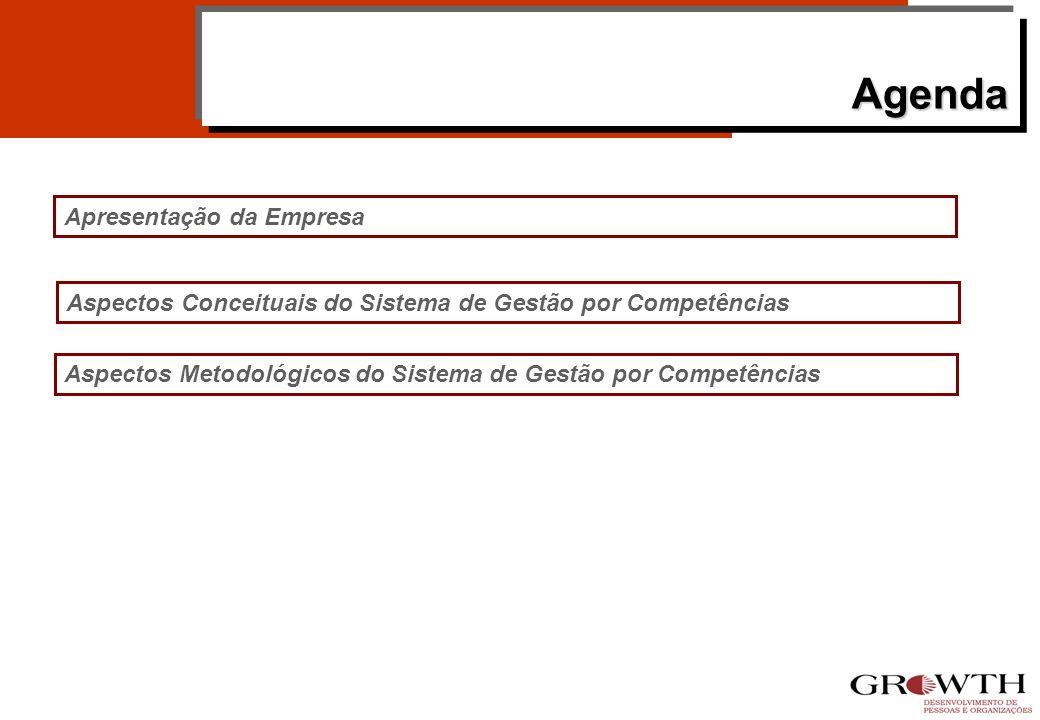 AgendaAgenda Aspectos Conceituais do Sistema de Gestão por Competências Apresentação da Empresa Aspectos Metodológicos do Sistema de Gestão por Competências