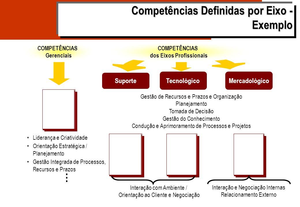 Eixo de Carreira GESTÃO DO DESENVOLVIMENTO Níveis de Agregação de Valor COMPETÊNCIAS (em níveis de complexidade) CAPACIDADES ESPAÇOS OCUPACIONAIS