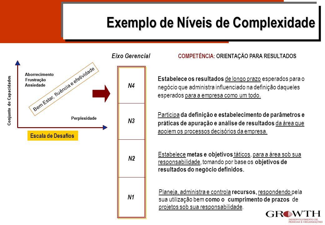 - Integração Entre Capacidade e Complexidade Bem Estar, fluência e efetividade Fonte: Stamp (1989) Adaptada Conjunto de Capacidades Escala de Desafios