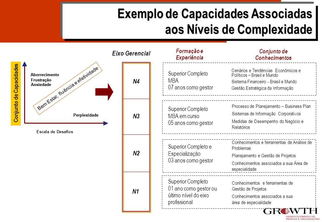 COMPETÊNCIA: ORIENTAÇÃO PARA RESULTADOS N4 N3 N2 N1 Exemplo de Níveis de Complexidade Estabelece os resultados de longo prazo esperados para o negócio
