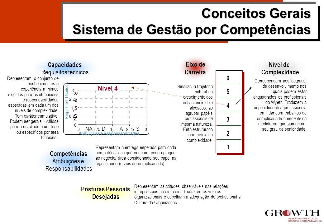 Exemplo de Capacidades Associadas aos Níveis de Complexidade Superior Completo MBA 07 anos como gestor Superior Completo MBA em curso 05 anos como ges