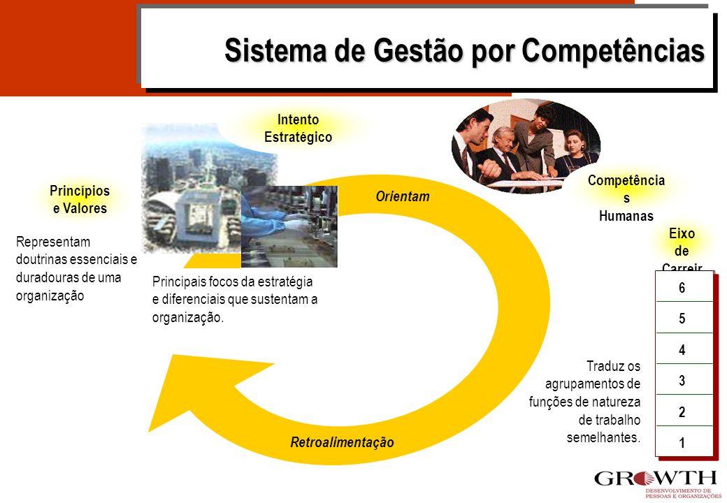 Princípios e Valores Eixo de Carreir a Traduz os agrupamentos de funções de natureza de trabalho semelhantes.