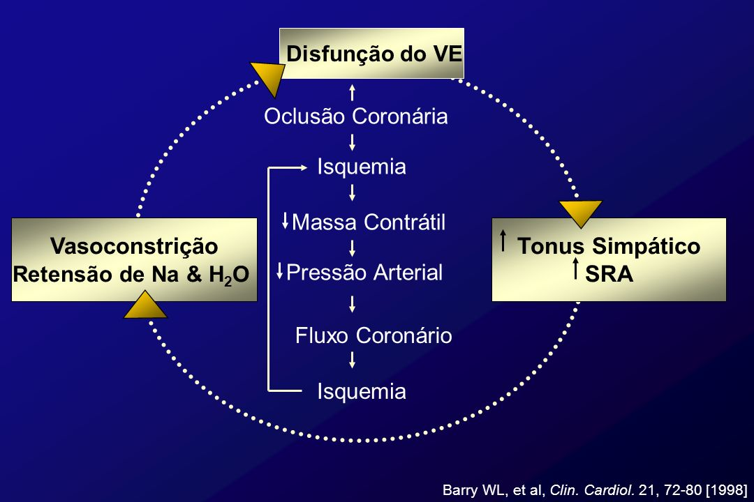 Disfunção do VE Vasoconstrição Retensão de Na & H 2 O Tonus Simpático SRA Oclusão Coronária Isquemia Massa Contrátil Pressão Arterial Fluxo Coronário