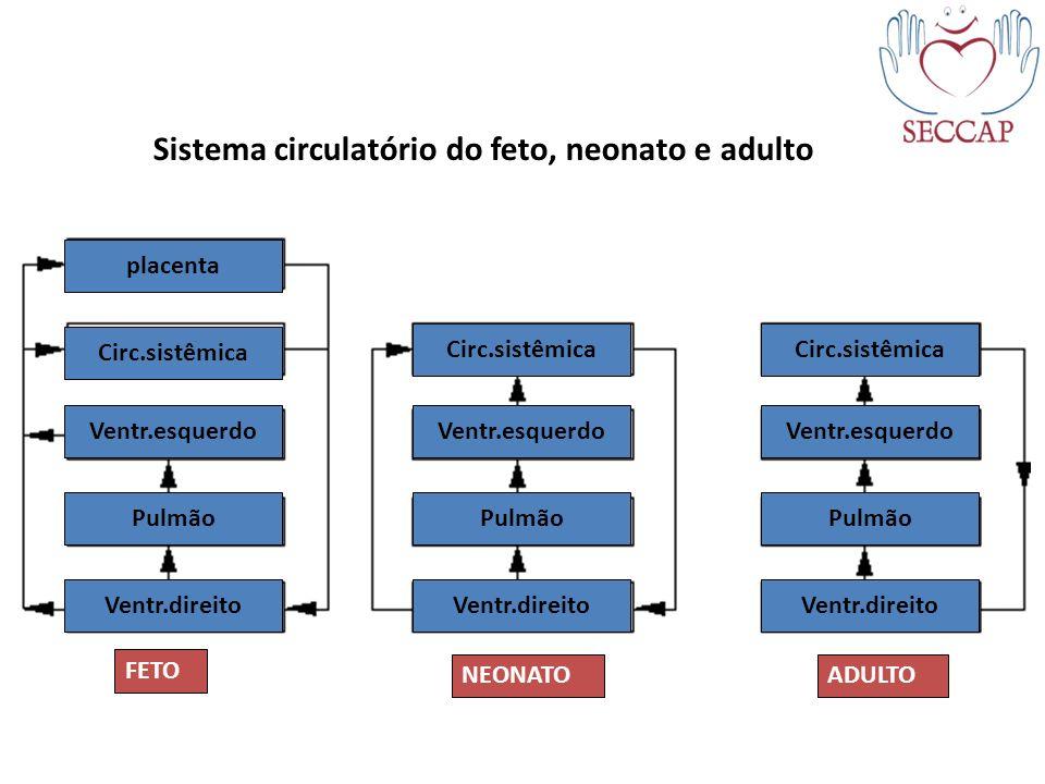 placenta Circ.sistêmica Ventr.esquerdo Pulmão Ventr.direito Circ.sistêmica Ventr.esquerdo Pulmão Ventr.direito Ventr.esquerdo Circ.sistêmica FETO NEON