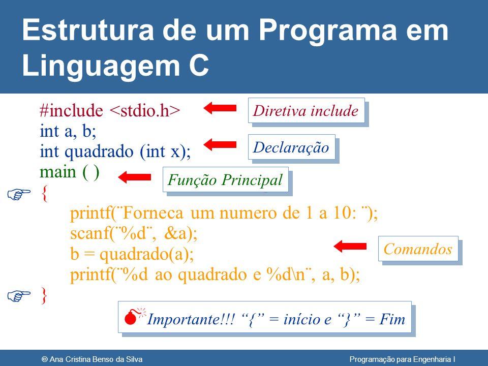 © Ana Cristina Benso da Silva Programação para Engenharia I Estrutura de um Programa em Linguagem C #include int a, b; int quadrado (int x); main ( )