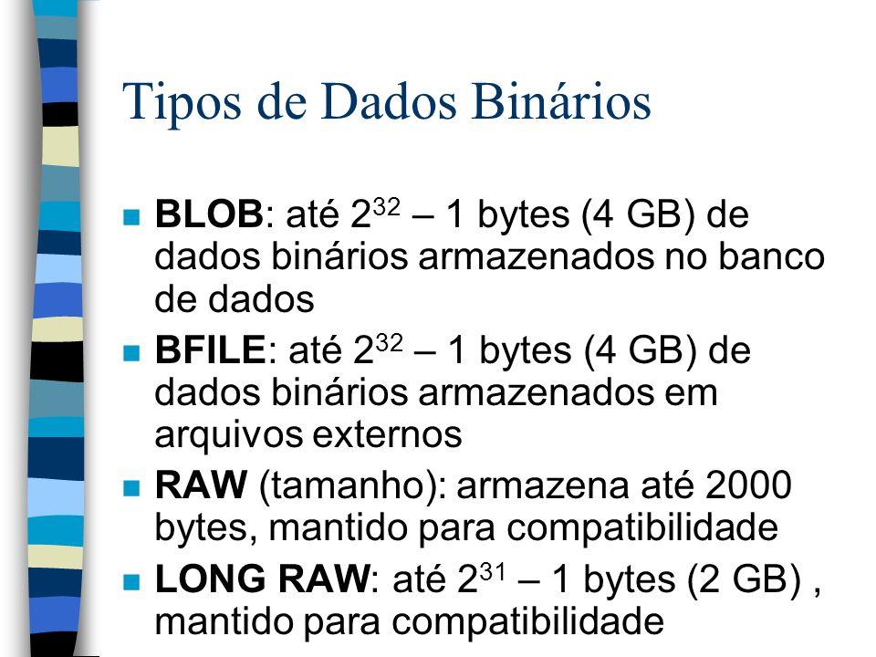 Tipos de Dados Binários n BLOB: até 2 32 – 1 bytes (4 GB) de dados binários armazenados no banco de dados n BFILE: até 2 32 – 1 bytes (4 GB) de dados