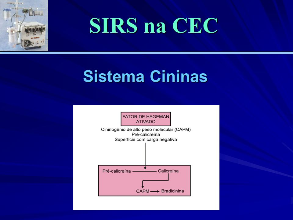 Sistema Cininas SIRS na CEC