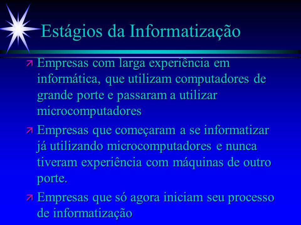 Estágios da Informatização ä Empresas com larga experiência em informática, que utilizam computadores de grande porte e passaram a utilizar microcompu