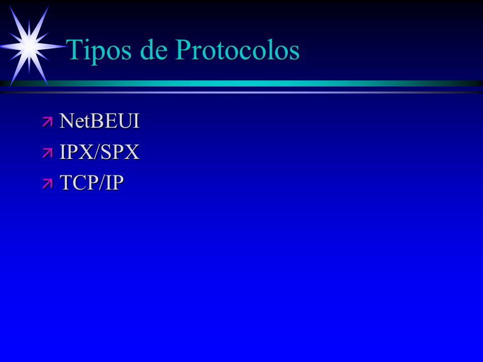 Tipos de Protocolos ä NetBEUI ä IPX/SPX ä TCP/IP