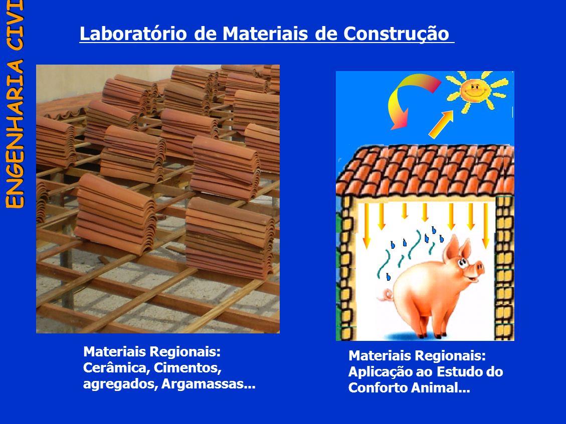 Laboratório de Materiais de Construção ENGENHARIA CIVIL Materiais Regionais: Cerâmica, Cimentos, agregados, Argamassas... Materiais Regionais: Aplicaç