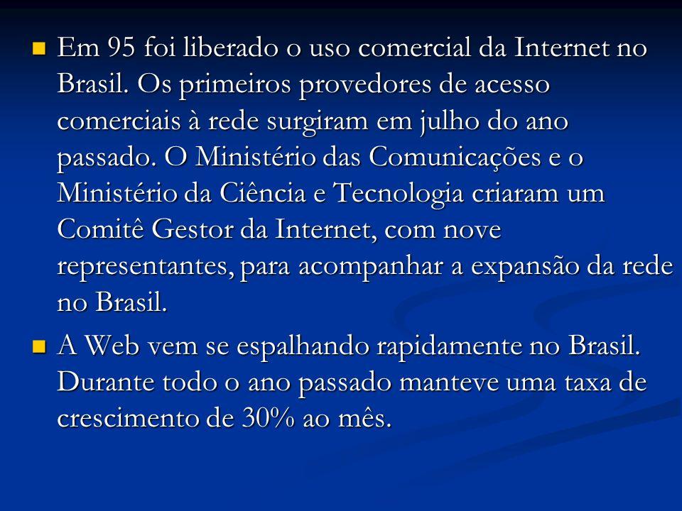 Em 95 foi liberado o uso comercial da Internet no Brasil. Os primeiros provedores de acesso comerciais à rede surgiram em julho do ano passado. O Mini