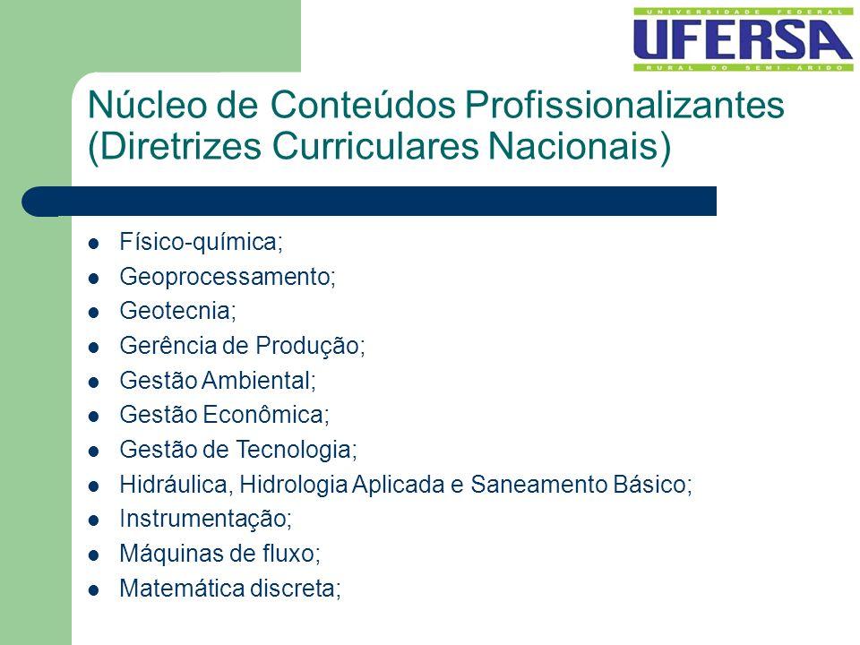 Núcleo de Conteúdos Profissionalizantes (Diretrizes Curriculares Nacionais) Físico-química; Geoprocessamento; Geotecnia; Gerência de Produção; Gestão