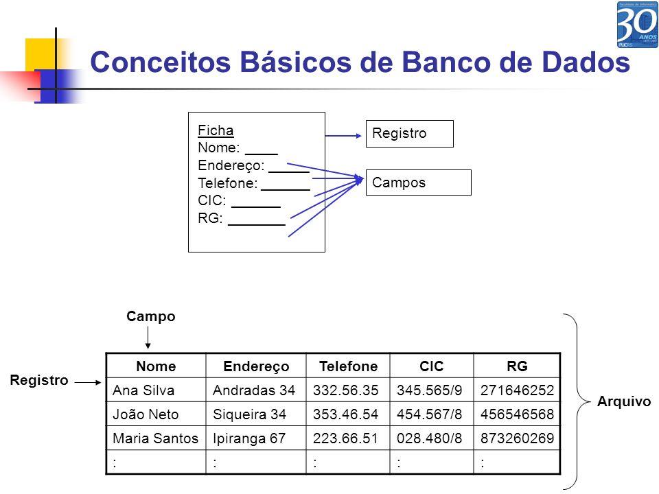 Conceitos Básicos de Banco de Dados NomeEndereçoTelefoneCICRG Ana SilvaAndradas 34332.56.35345.565/9271646252 João NetoSiqueira 34353.46.54454.567/845