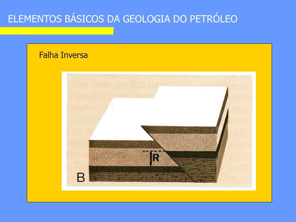 ELEMENTOS BÁSICOS DA GEOLOGIA DO PETRÓLEO Falha Inversa