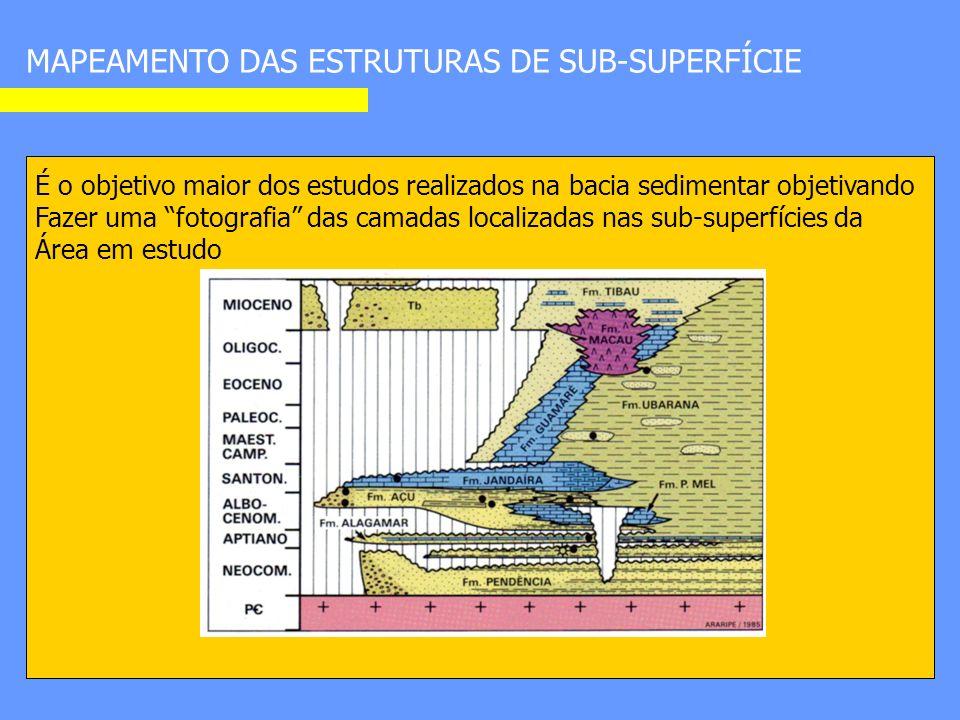 MAPEAMENTO DAS ESTRUTURAS DE SUB-SUPERFÍCIE É o objetivo maior dos estudos realizados na bacia sedimentar objetivando Fazer uma fotografia das camadas localizadas nas sub-superfícies da Área em estudo