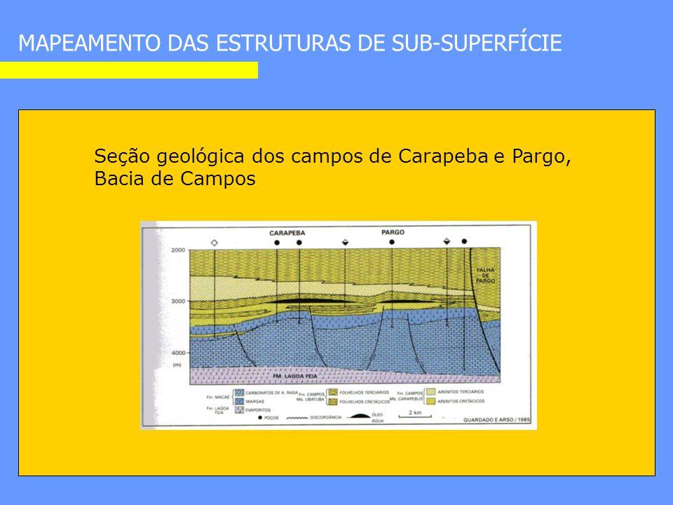 Seção geológica dos campos de Carapeba e Pargo, Bacia de Campos MAPEAMENTO DAS ESTRUTURAS DE SUB-SUPERFÍCIE