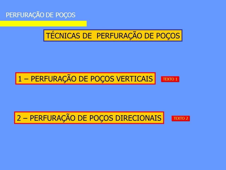 TÉCNICAS DE PERFURAÇÃO DE POÇOS PERFURAÇÃO DE POÇOS 1 – PERFURAÇÃO DE POÇOS VERTICAIS 2 – PERFURAÇÃO DE POÇOS DIRECIONAIS TEXTO 1 TEXTO 2