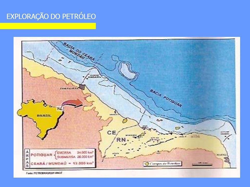 Seção geológica da Bacia Potiguar de Ubarana. MAPEAMENTO DAS ESTRUTURAS DE SUB-SUPERFÍCIE