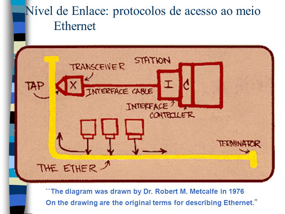 ``The diagram was drawn by Dr.Robert M.