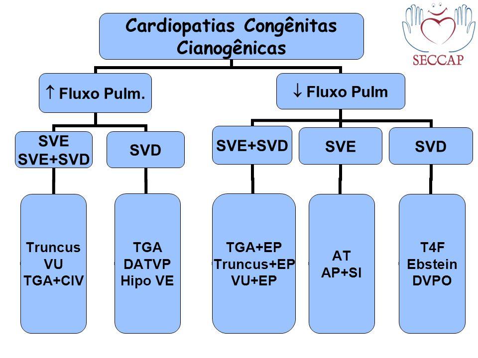 Cardiopatias Congênitas Cianogênicas Fluxo Pulm. SVE SVE+SVD Truncus VU TGA+CIV SVD TGA DATVP Hipo VE Fluxo Pulm SVE AT AP+SI SVD T4F Ebstein DVPO SVE