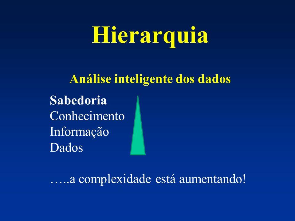 Hierarquia Análise inteligente dos dados Sabedoria Conhecimento Informação Dados …..a complexidade está aumentando!