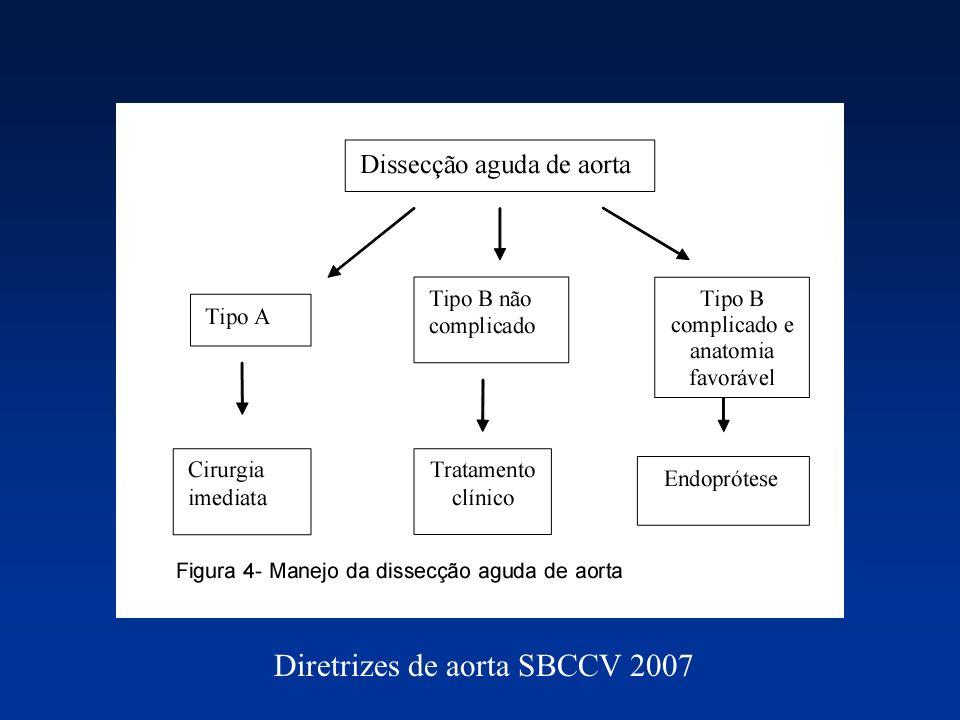 Diretrizes de aorta SBCCV 2007