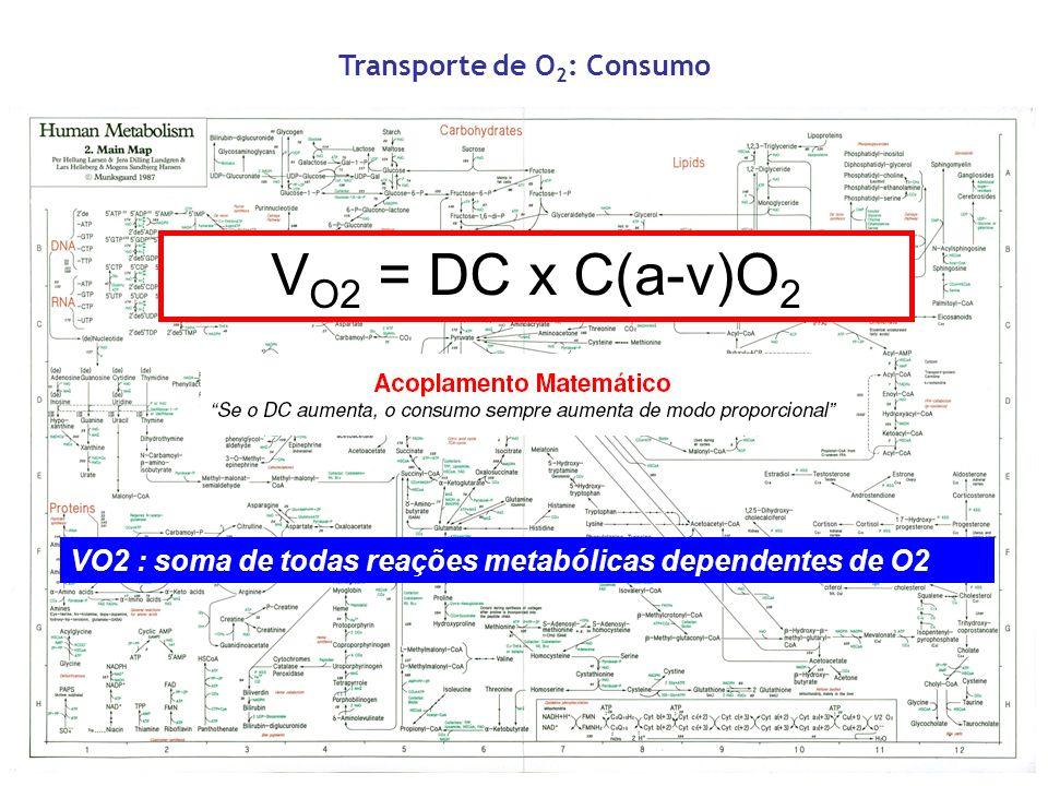 Transporte de O 2 : Consumo V O2 = DC x C(a-v)O 2 VO2 : soma de todas reações metabólicas dependentes de O2
