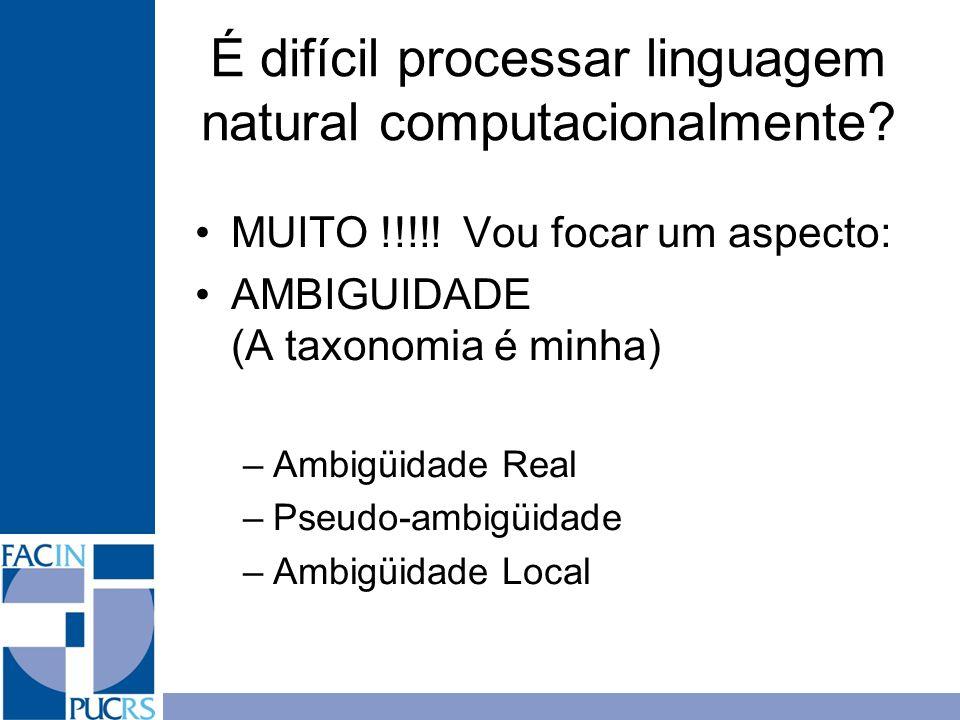 É difícil processar linguagem natural computacionalmente? MUITO !!!!! Vou focar um aspecto: AMBIGUIDADE (A taxonomia é minha) –Ambigüidade Real –Pseud