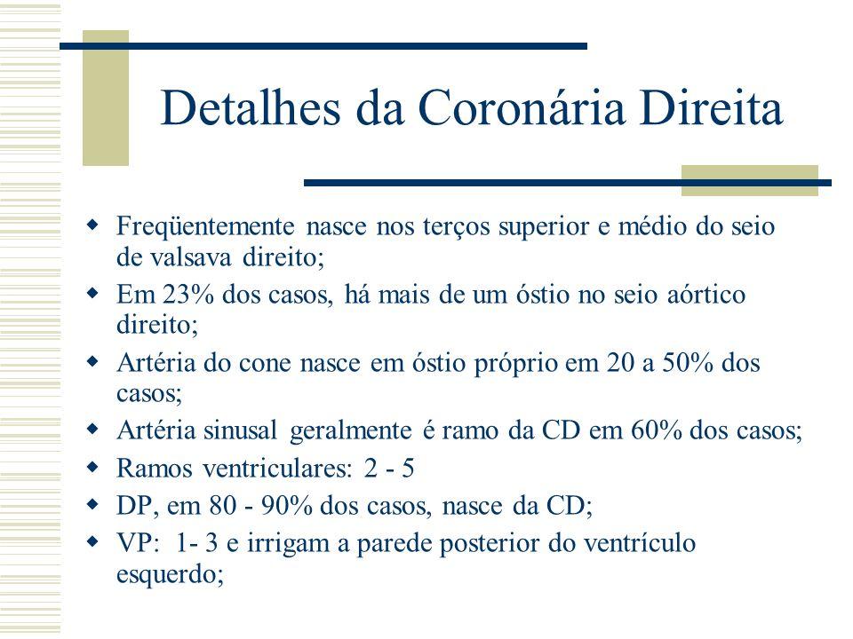 Detalhes da Coronária Direita Freqüentemente nasce nos terços superior e médio do seio de valsava direito; Em 23% dos casos, há mais de um óstio no se