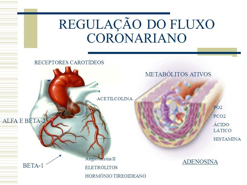 REGULAÇÃO DO FLUXO CORONARIANO RECEPTORES CAROTÍDEOS ALFA E BETA-2 BETA-1 METABÓLITOS ATIVOS ADENOSINA Angiotensina II ELETRÓLITOS HORMÔNIO TIREOIDEAN